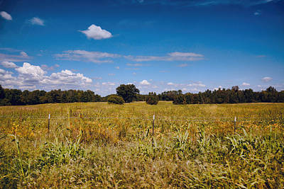 Photograph - Tennessee Fields - Country Landscape Scene by Jai Johnson
