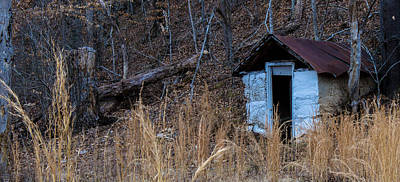 Photograph - Tennessee Shed by Mark Bowmer