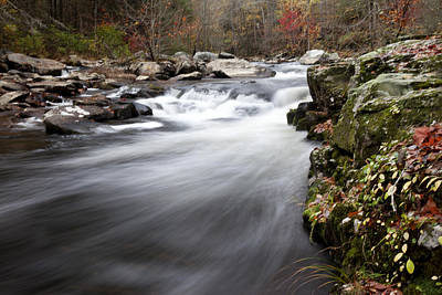 Photograph - Tennessee Stream by Robert Camp