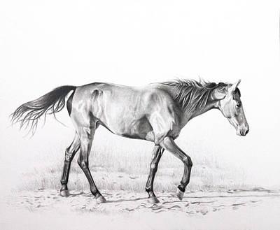 Tennessee Walking Horse Art Print by Karen Broemmelsick