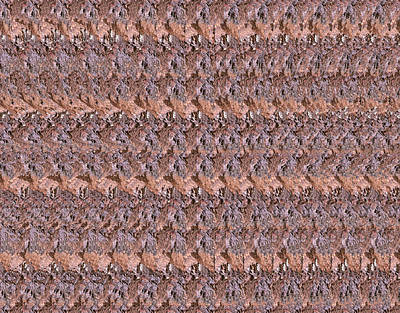 Tentacles Stereogram Original by Vijay Sonar