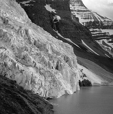 Photograph - Terminus Of Berg Glacier by Ed  Cooper Photography