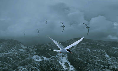 Painting - Terns Over Stormy Seas by IM Spadecaller