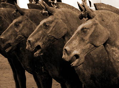 Photograph - Terra Cotta Horses - X'iang - Sepia by Jacqueline M Lewis