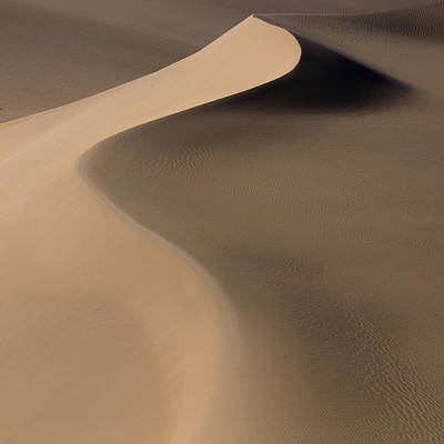 Dunes Wall Art - Photograph - Terra Incognita Xxxiii by Will Nourse