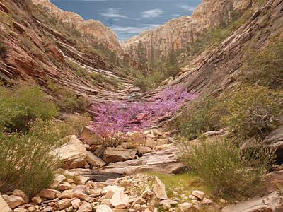 Terrace Canyon Art Print by Alan Socolik