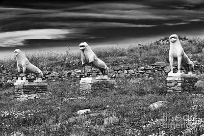 Photograph - Terrace Of The Lions by John Rizzuto