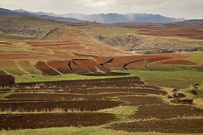 Lesotho Photograph - Terraced Fields by Bob Gibbons