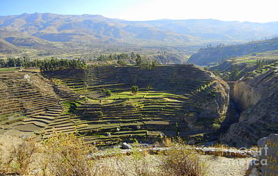 Photograph - Terraces In The Andes Desert by Lew Davis