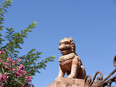 Photograph - Terracotta Chinese Lion  by Brenda Kean