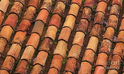Photograph - Terracotta Roof Art by Michele Penner