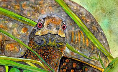 Box Turtle Painting - Carolina Terrapene by Marie Stone Van Vuuren