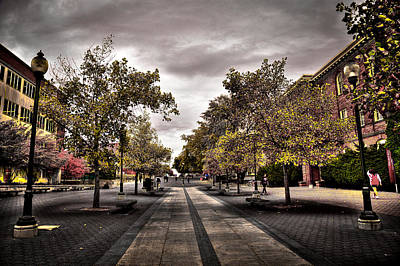 Terrell Photograph - Terrell Mall On The Wsu Campus by David Patterson