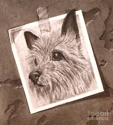 Drawing - Terrier As Optical Illusion by Susan A Becker