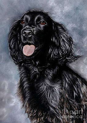 Cocker Spaniel Painting - Tess by Caroline Collinson
