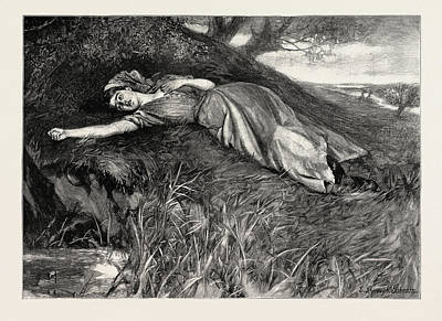 Fling Drawing - Tess Of The Durbervilles Tess Flung Herself by English School