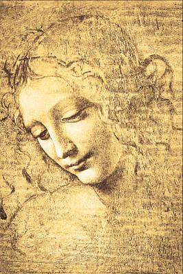 Curly Hair Painting - Testa Di Fanciulla Detta La Scapigliata by Leonardo Da Vinci