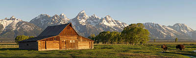 Teton Barn With Bison Art Print by Aaron Spong