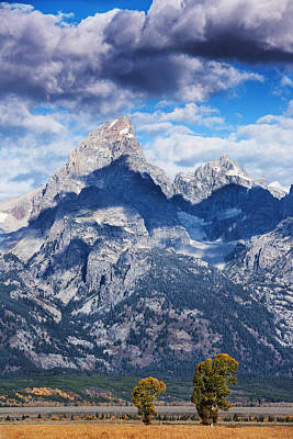 Photograph - Teton Range And Two Trees by Vishwanath Bhat