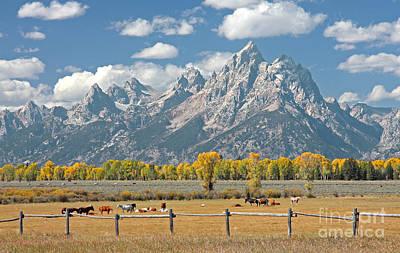Photograph - Teton Range by Bill Singleton