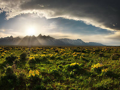 Photograph - Teton Spring 3 by Leland D Howard
