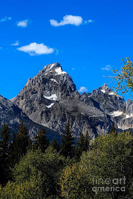 Photograph - Teton View by Robert Bales