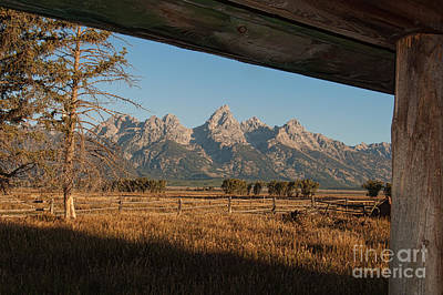 Photograph - Teton View by Sharon Seaward