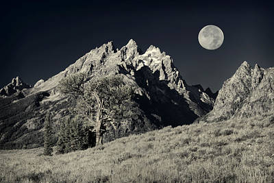 Photograph - Tetons Black And White by Greg Norrell