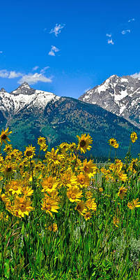 Photograph - Tetons Peaks And Flowers Left Panel by Greg Norrell
