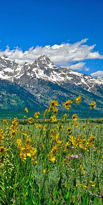 Photograph - Tetons Peaks And Flowers Right Panel by Greg Norrell