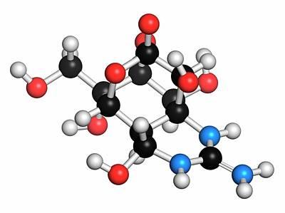Tetrodotoxin Pufferfish Neurotoxin Molecule Art Print