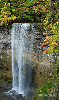 Autumn Photograph - Tews Falls In Autumn by Barbara McMahon