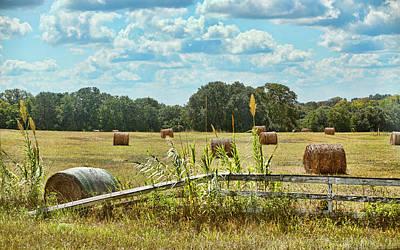 Texan Field Of Hay Bales Original