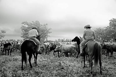 Roundup Photograph - Texan Roundup by Mountain Dreams