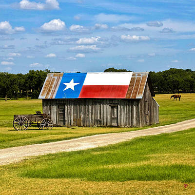 Texas Barn Flag Art Print