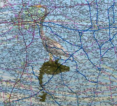 Digital Art - Texas Blue Heron by Ron Davidson