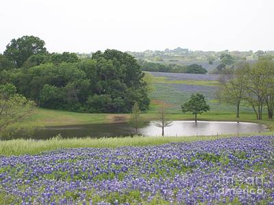 Photograph - Texas Bluebonnets And Lake by Ellen Howell