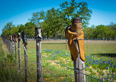 Barbwire Photograph - Texas Boot Fence by Inge Johnsson