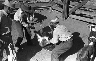 Texas Cattle Ranch, 1939 Art Print by Granger