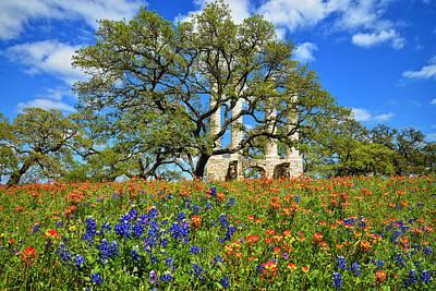 Photograph - Springtime Ruins by Lynn Bauer