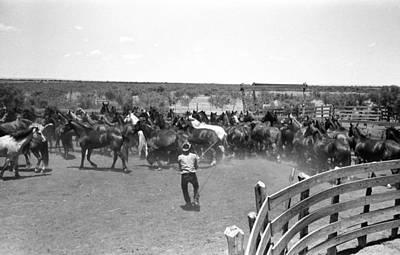 Texas Cowboy, 1939 Art Print by Granger