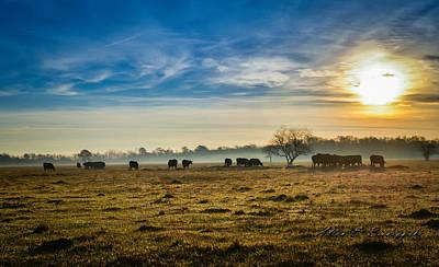 Art Print featuring the photograph Texas Crisp Winter Morning by Allen Biedrzycki