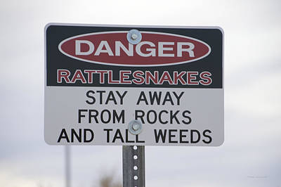 Texas Danger Rattle Snakes Signage Art Print by Thomas Woolworth