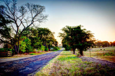 Asphalt Digital Art - Texas Farm Road Morning by Barry Jones
