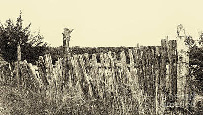 Digital Art - Texas Fence In Sepia by Luther Fine Art
