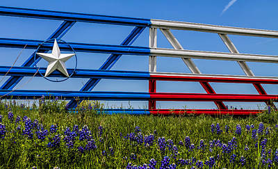 Photograph - Texas Flag Painted Gate With Blue Bonnets by Robert Bellomy