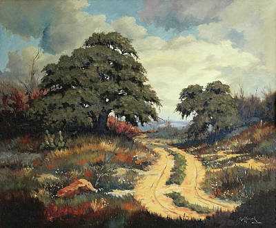 Texas Hill Country Art Print by Bob Hallmark