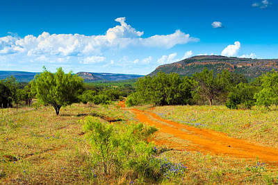Country Dirt Roads Photograph - Texas Hill Country Red Dirt Road by Darryl Dalton