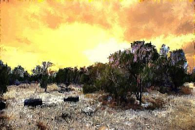 Texas Hill Country Art Print