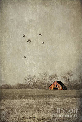 Red Barns Photograph - Texas Landscape by Elena Nosyreva